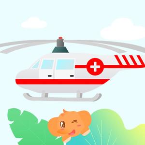 境外旅行综合及紧急救援保险尊贵计划B(新)
