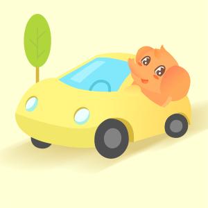 环球自驾车意外伤害保险至尊版