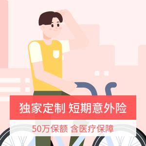 中国人寿-短期综合意外险计划4
